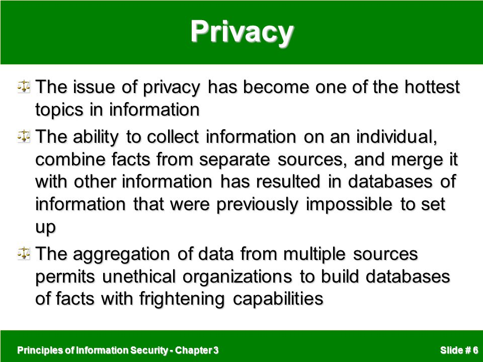 Privacy The issue of privacy has become one of the hottest topics in information.