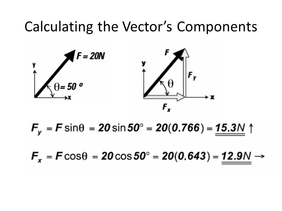 Calculating the Vector's Components