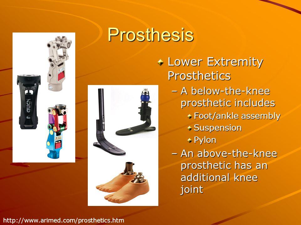 Prosthesis Lower Extremity Prosthetics