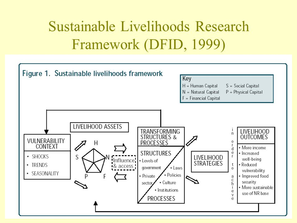 Sustainable Livelihoods Research Framework (DFID, 1999)