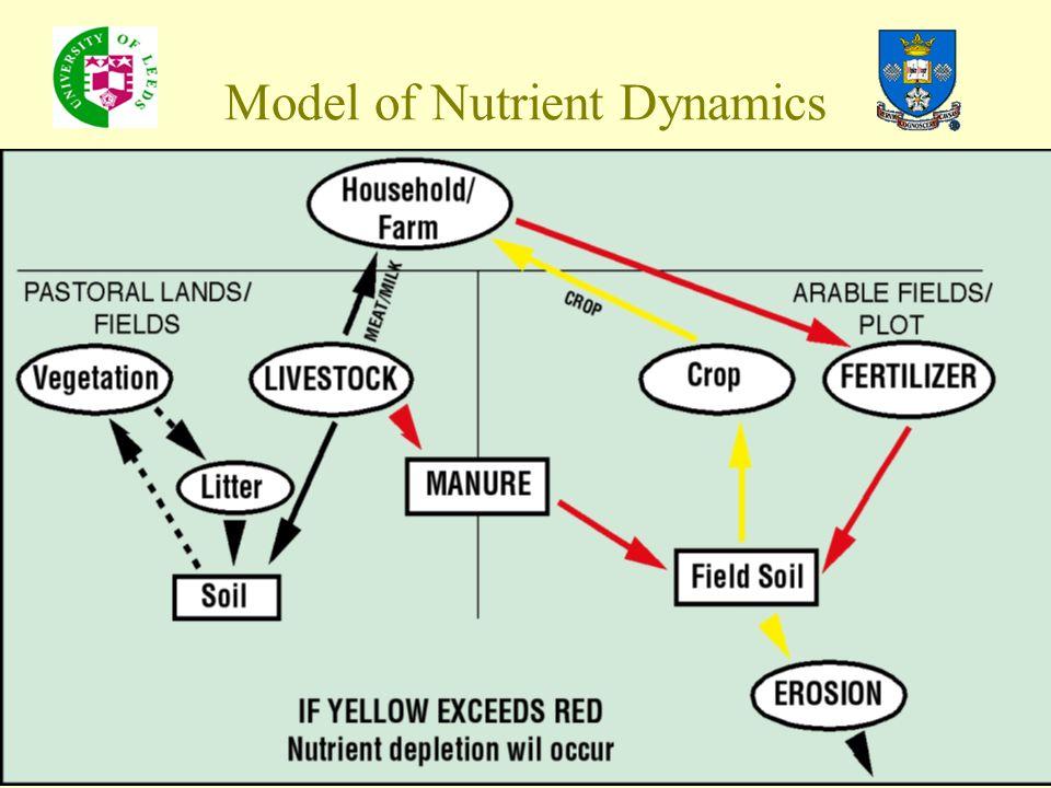 Model of Nutrient Dynamics
