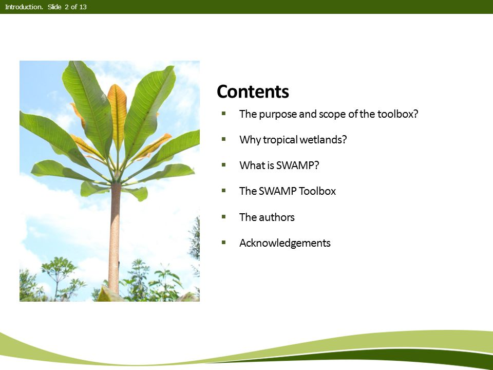 Contents The purpose and scope of the toolbox Why tropical wetlands