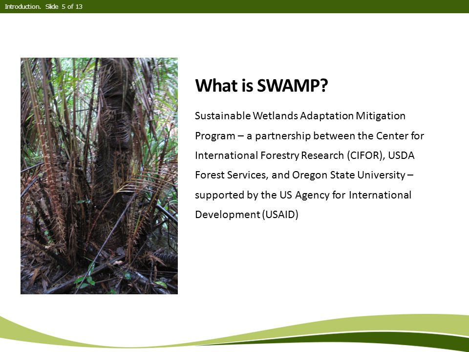 Introduction. Slide 5 of 13 What is SWAMP