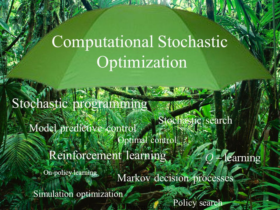 Computational Stochastic Optimization