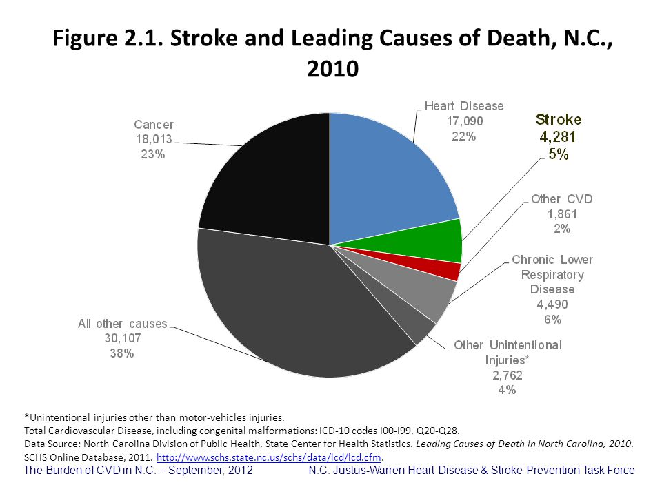 Figure 2.1. Stroke and Leading Causes of Death, N.C., 2010