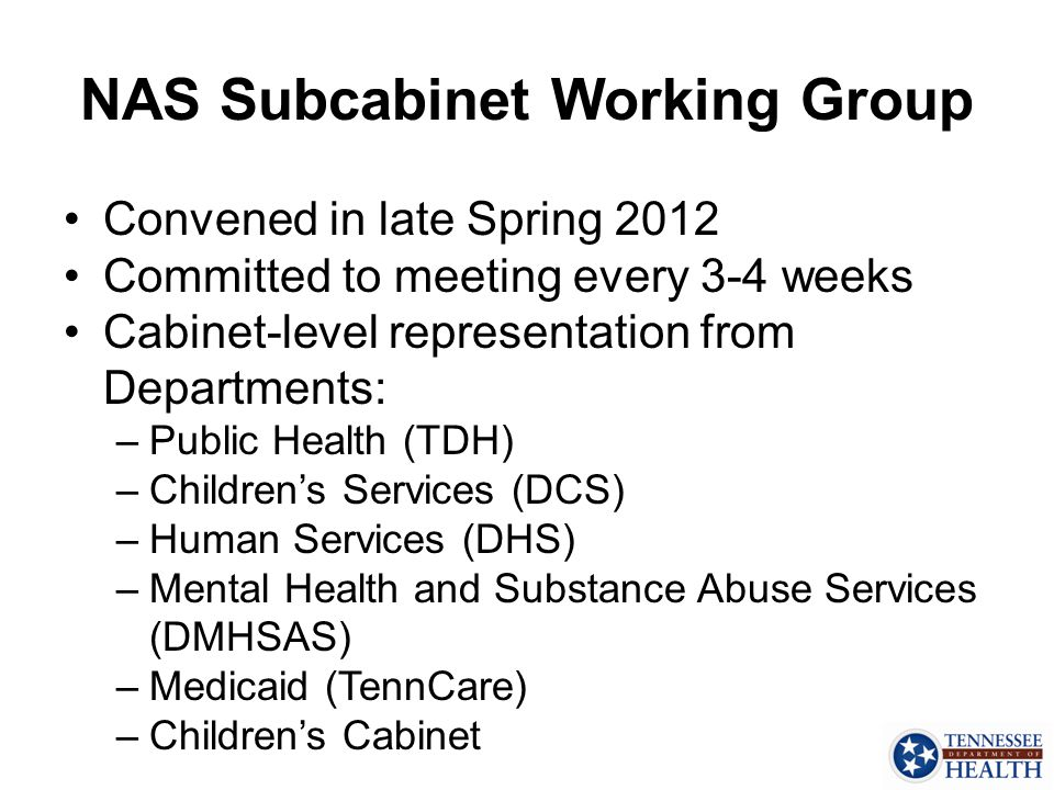 NAS Subcabinet Working Group
