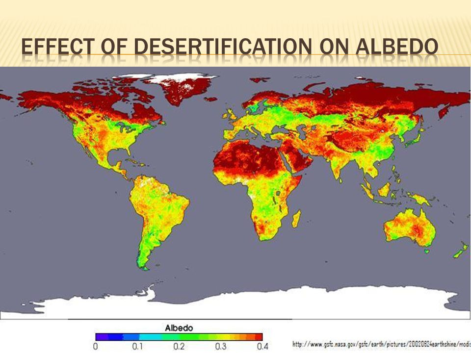 Effect of desertification on albedo
