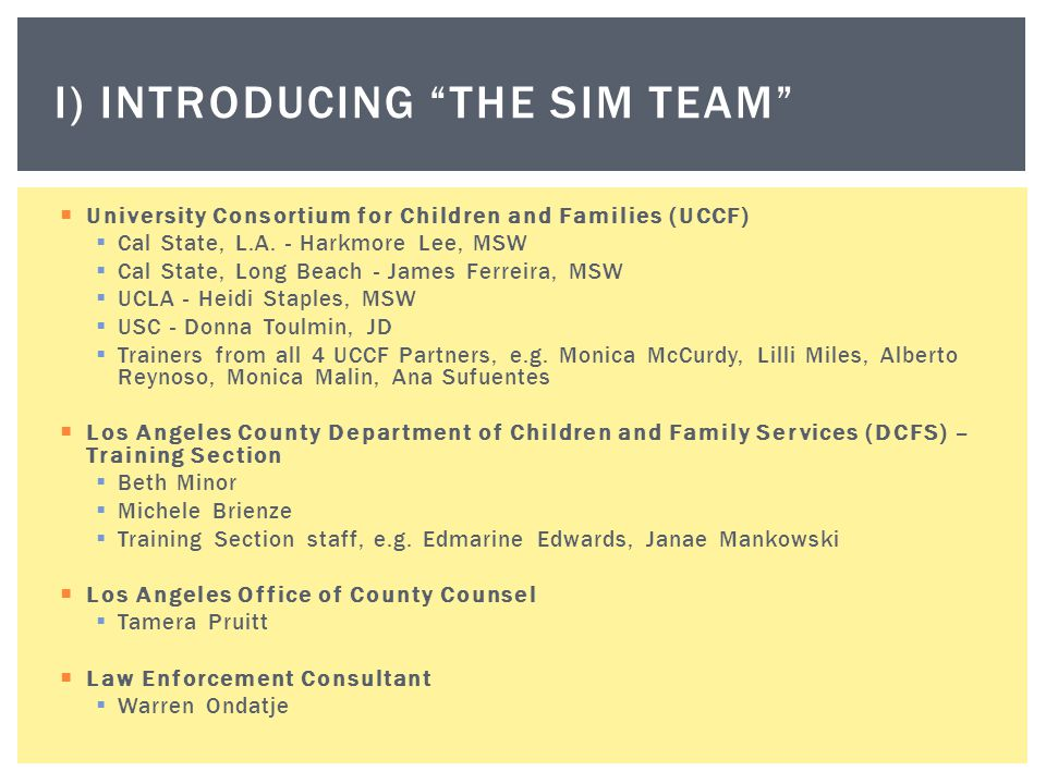 I) Introducing the Sim team