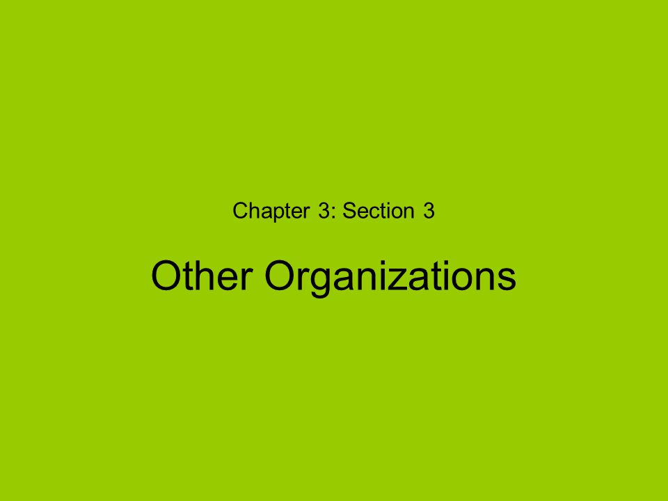 Chapter 3: Section 3 Other Organizations