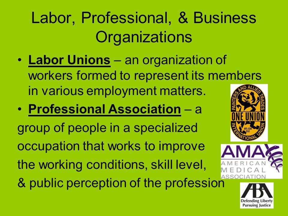 Labor, Professional, & Business Organizations