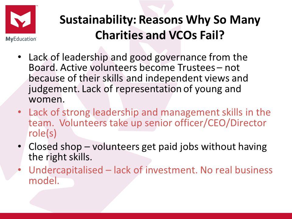 Sustainability: Reasons Why So Many Charities and VCOs Fail