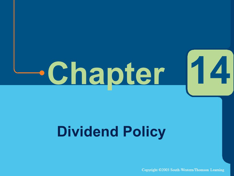 14 Dividend Policy