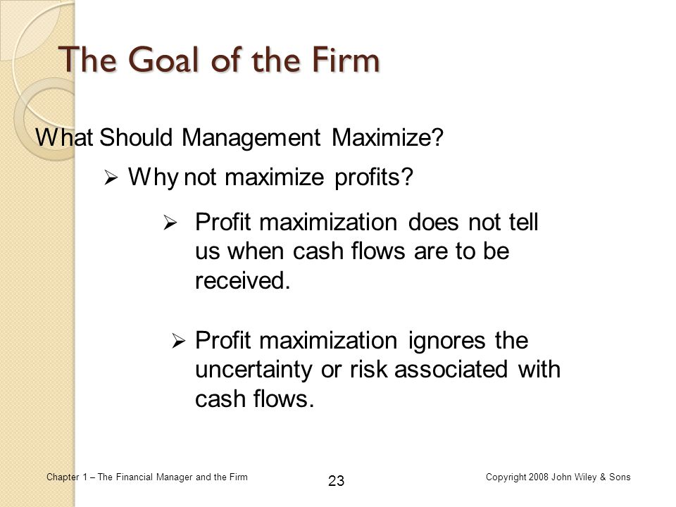 The Goal of the Firm What Should Management Maximize
