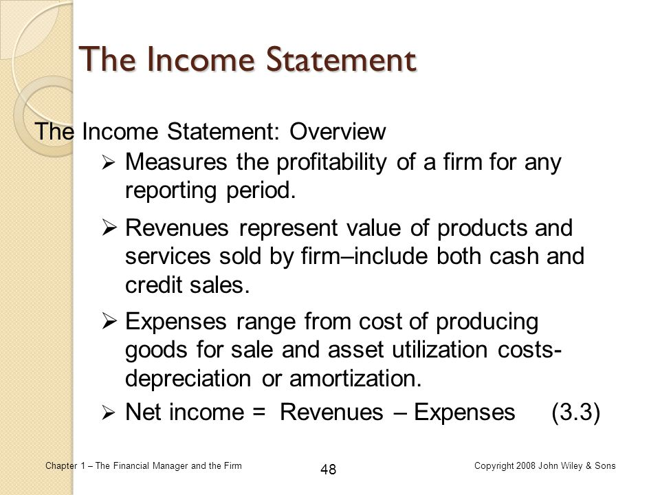 The Income Statement The Income Statement: Overview