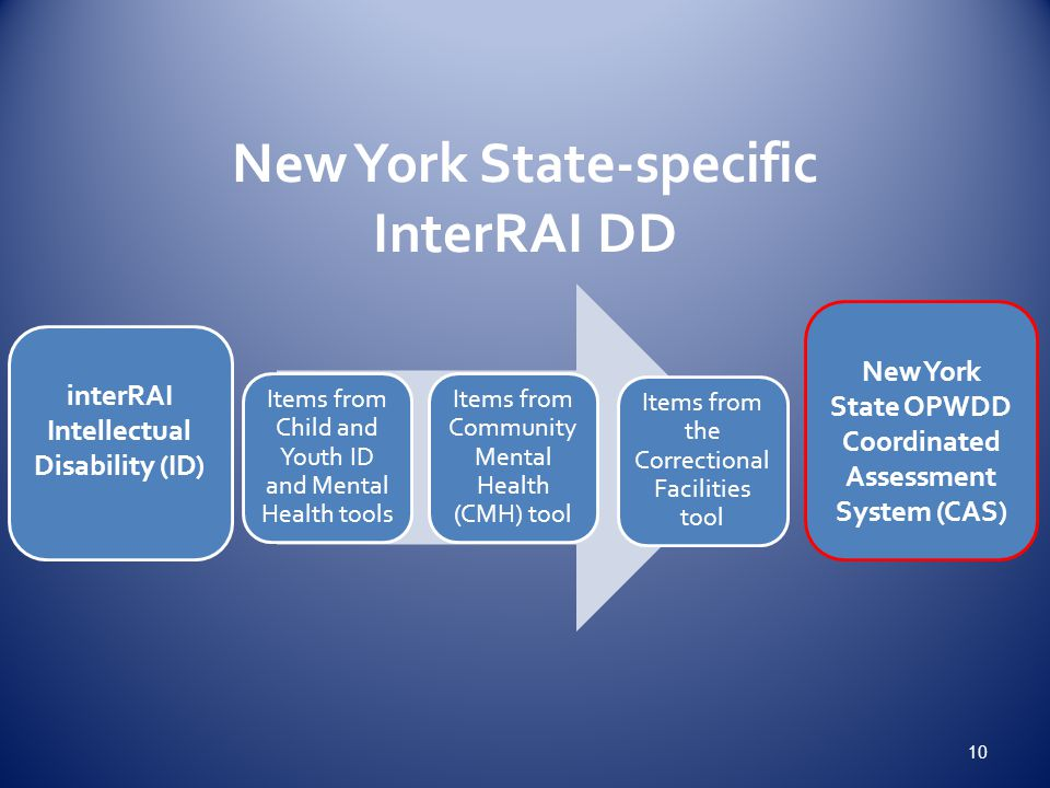 New York State-specific InterRAI DD
