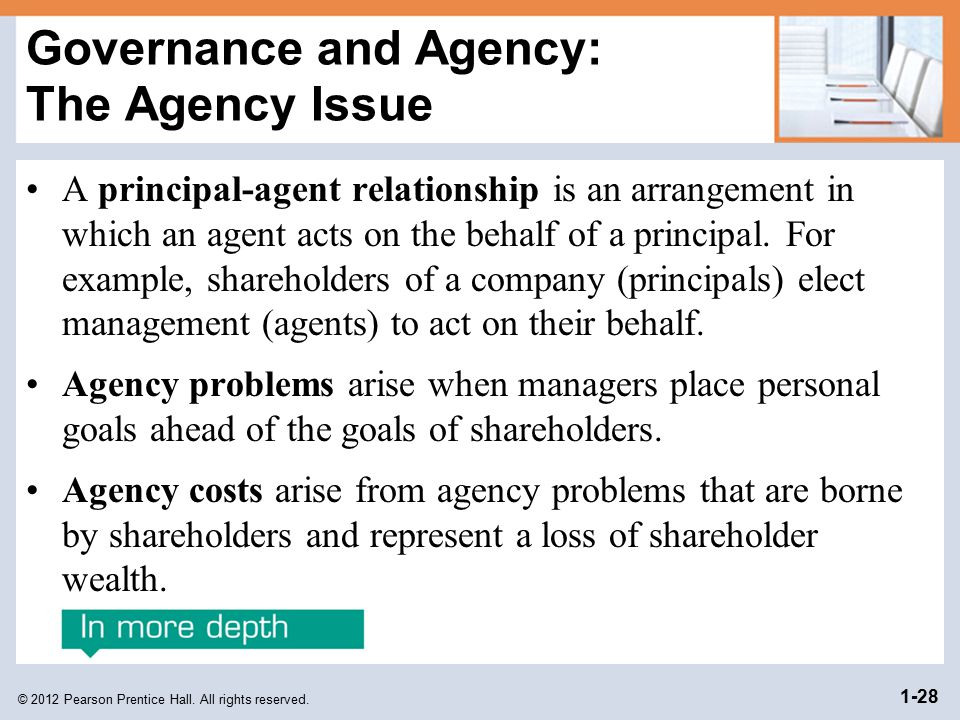 Governance and Agency: The Agency Issue