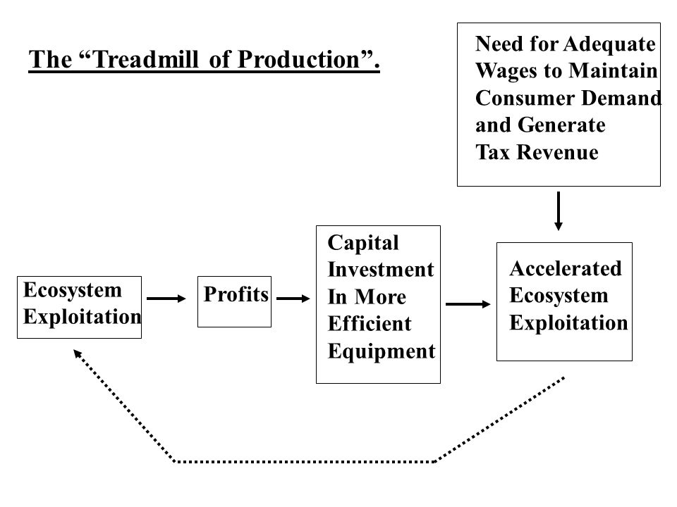 The Treadmill of Production .