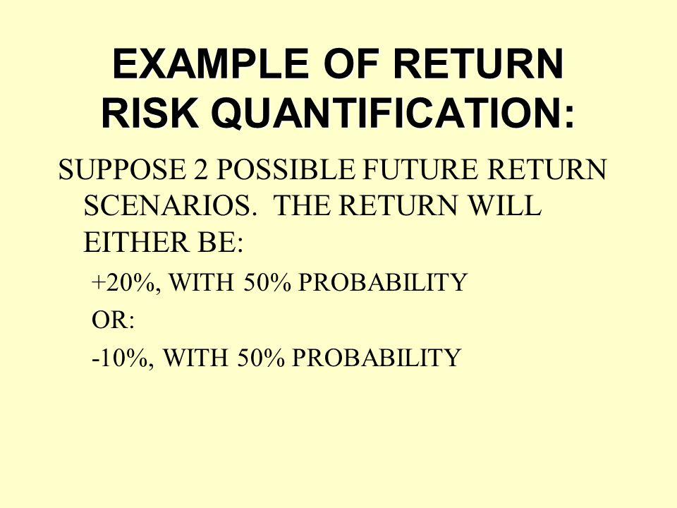 EXAMPLE OF RETURN RISK QUANTIFICATION: