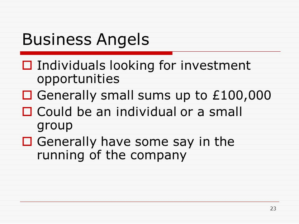 Business Angels Individuals looking for investment opportunities