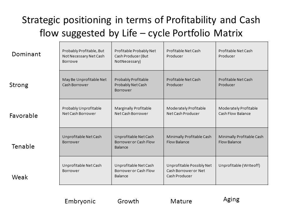 Strategic positioning in terms of Profitability and Cash flow suggested by Life – cycle Portfolio Matrix