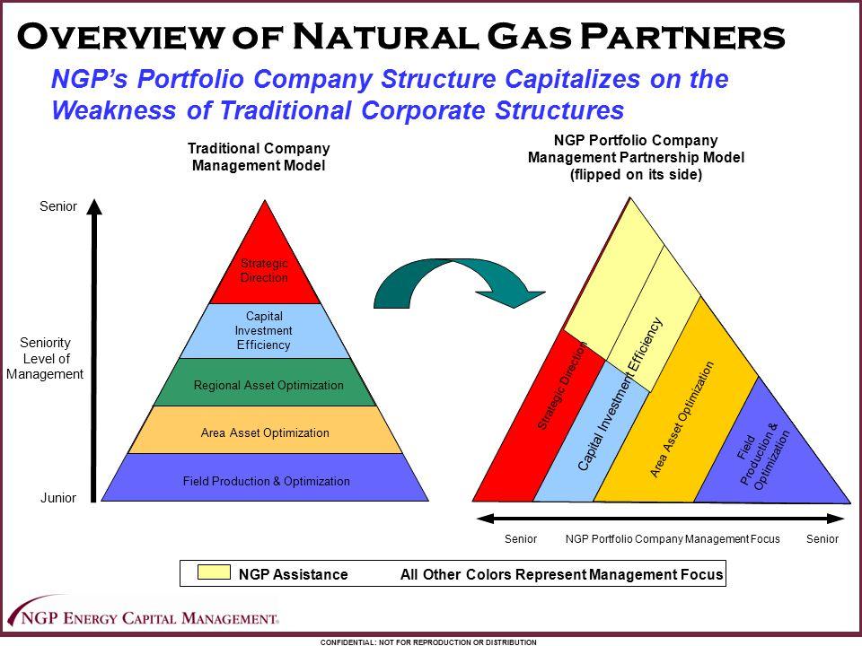 Management Partnership Model