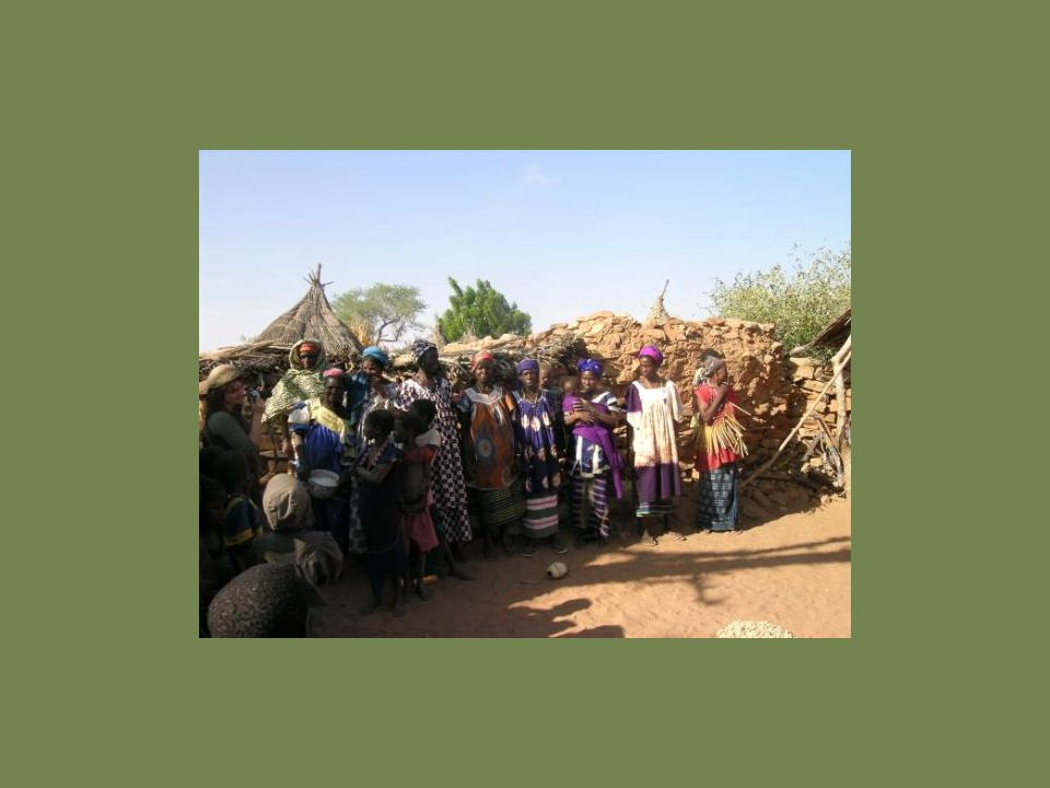 Photo: Women's Association in Dogon country