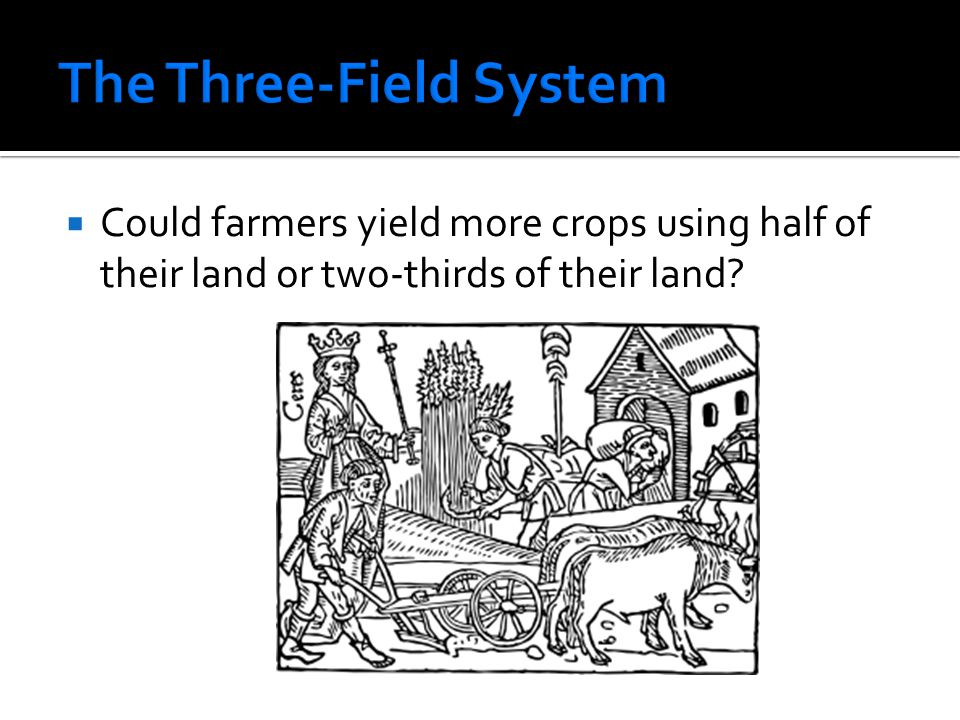 The Three-Field System
