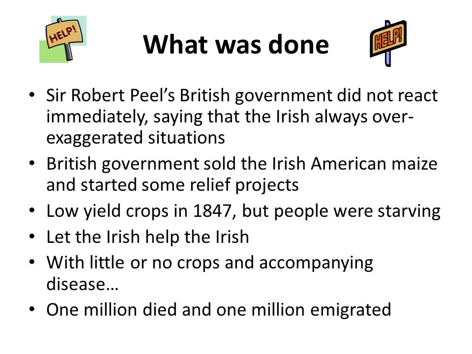 What was done Sir Robert Peel's British government did not react immediately, saying that the Irish always over-exaggerated situations.