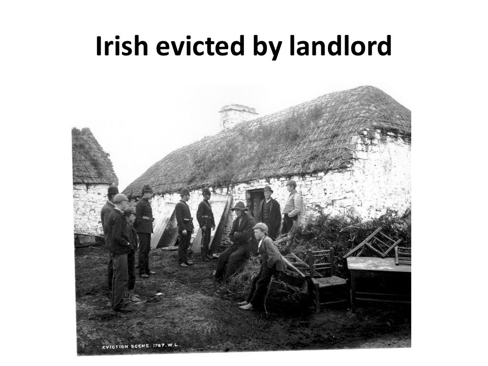 Irish evicted by landlord
