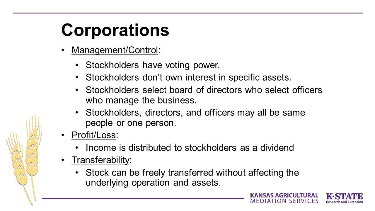 Corporations Management/Control: Stockholders have voting power.