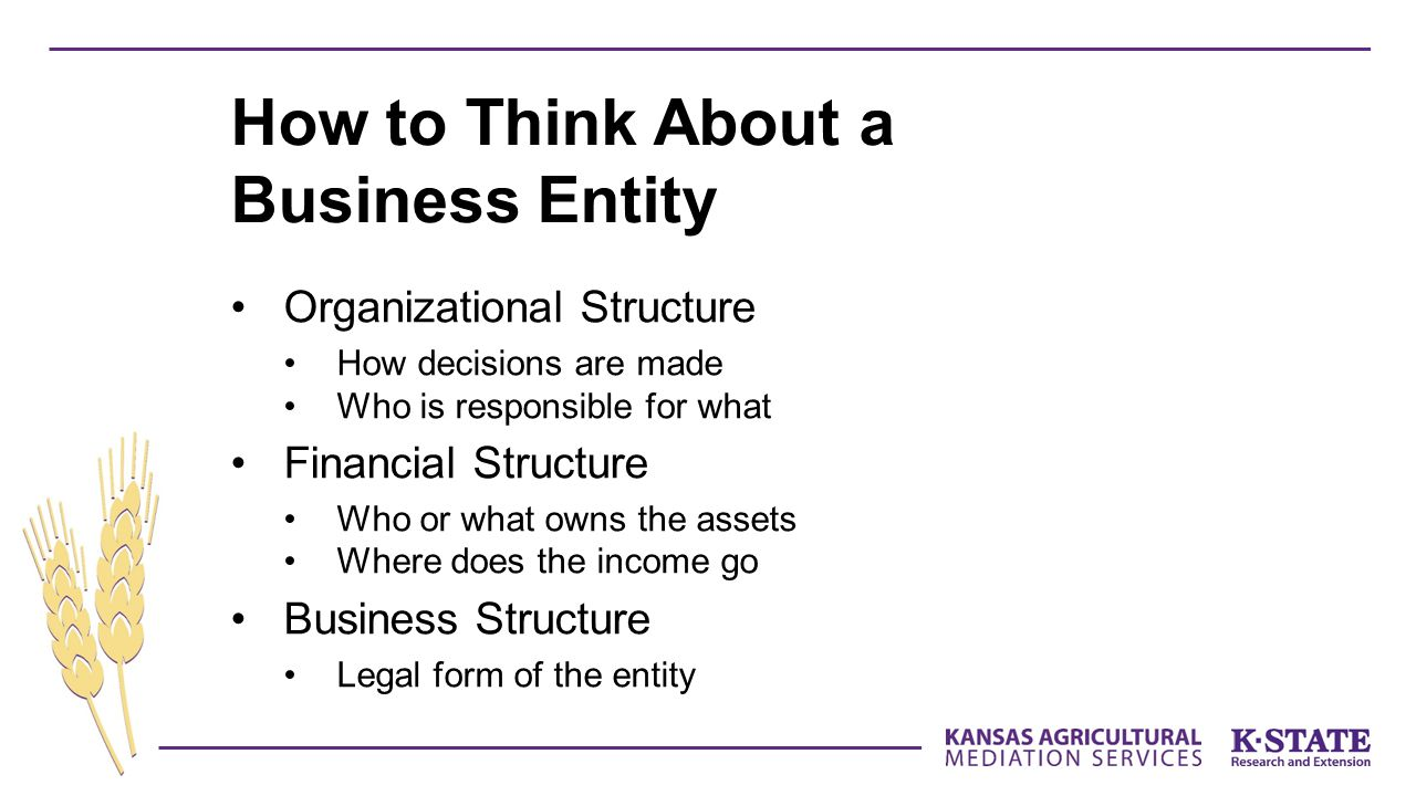 How to Think About a Business Entity
