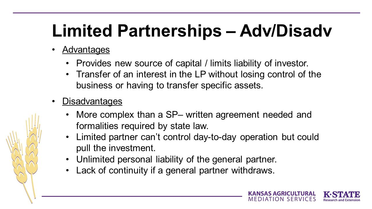 Limited Partnerships – Adv/Disadv