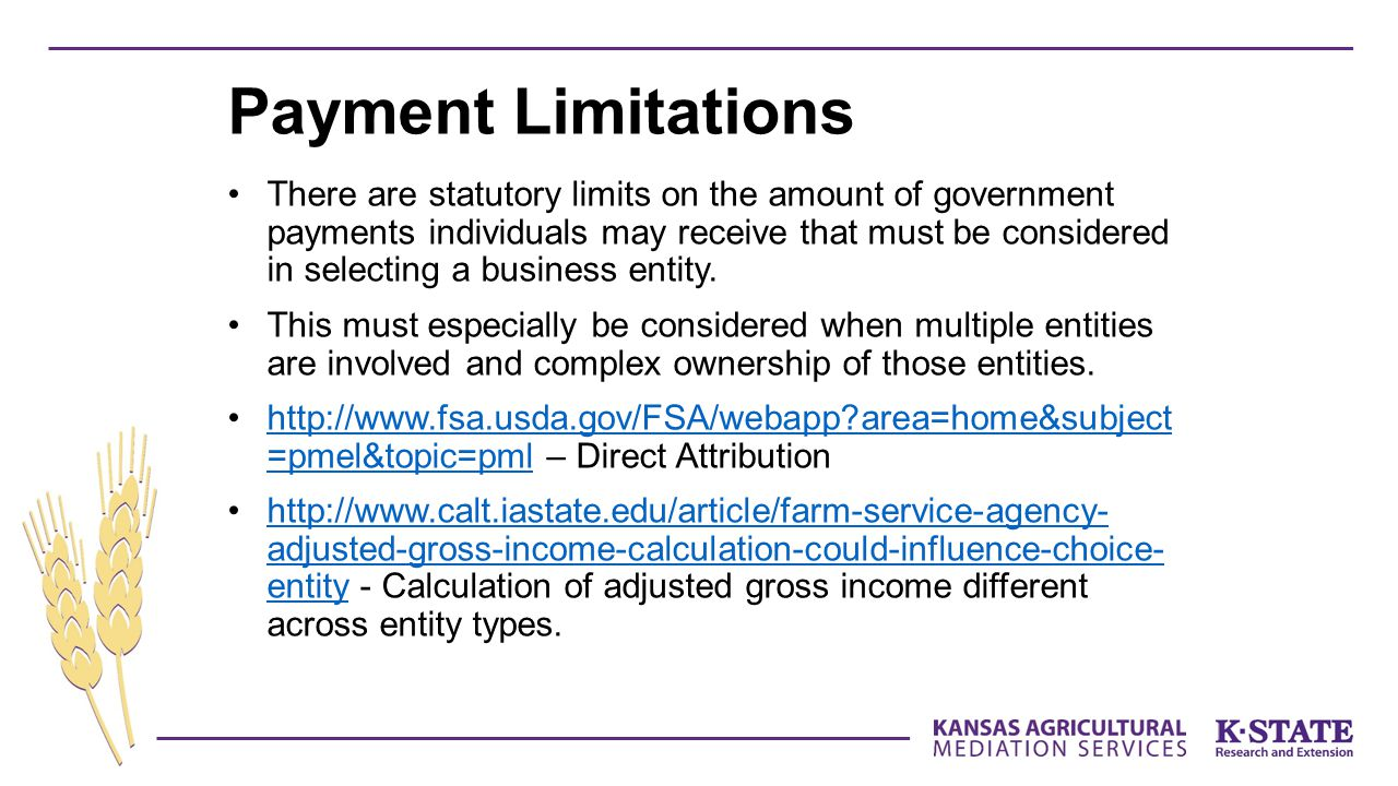 Payment Limitations