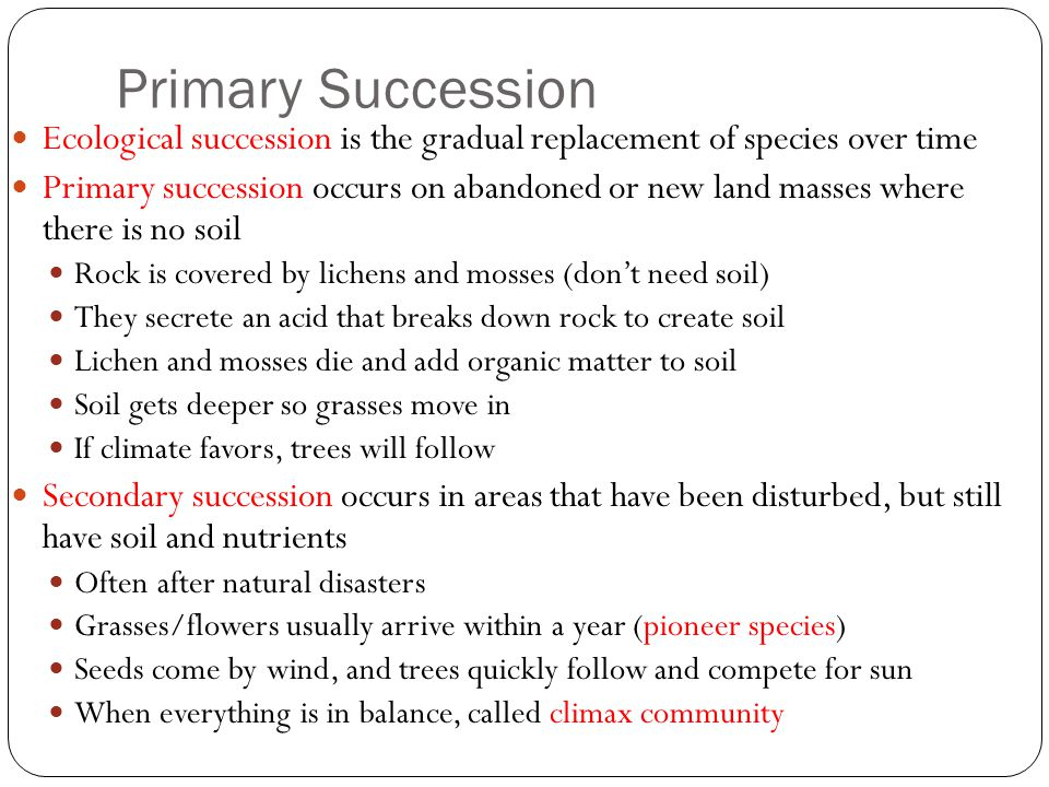 Primary Succession Ecological succession is the gradual replacement of species over time.