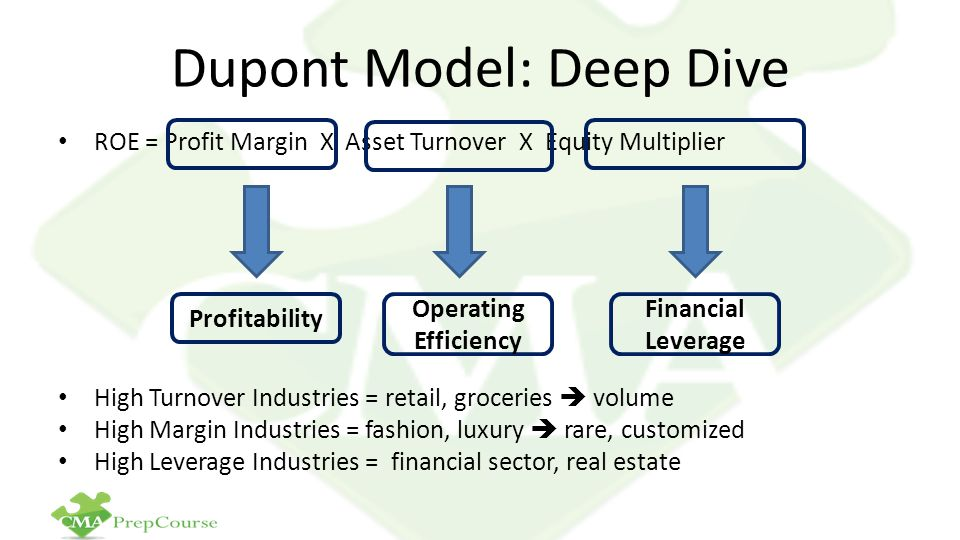 Dupont Model: Deep Dive