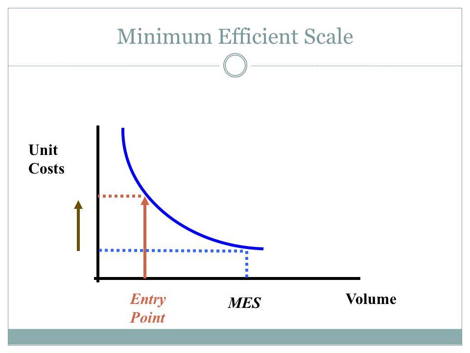 Minimum Efficient Scale