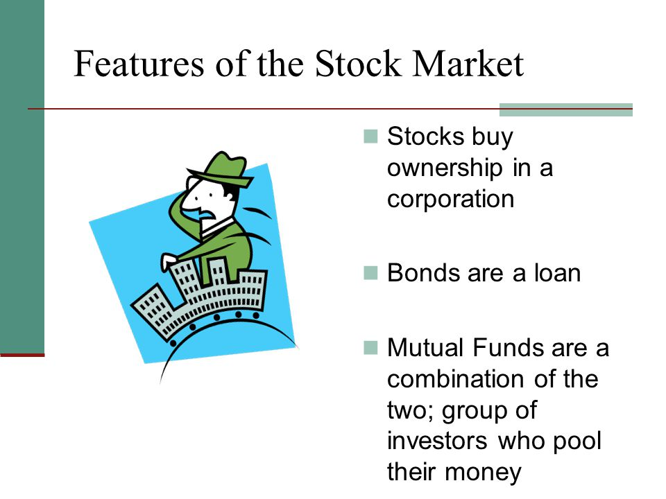 Features of the Stock Market