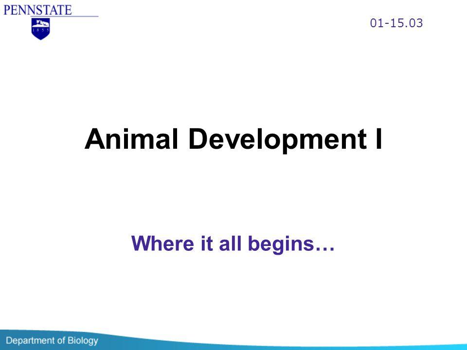 01-15.03 Animal Development I Where it all begins…