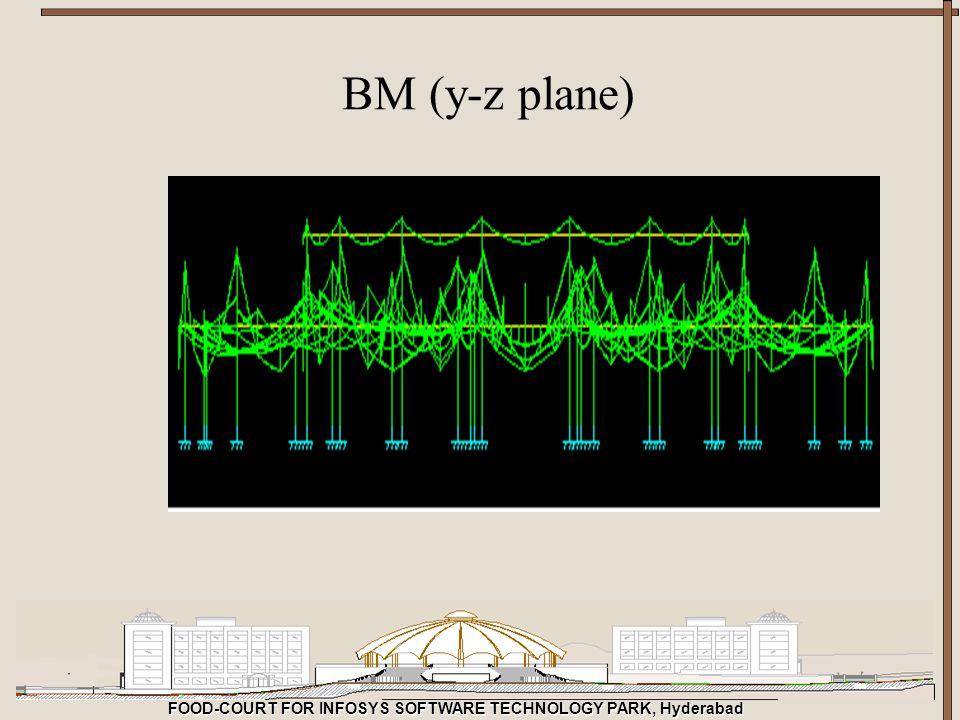 BM (y-z plane)