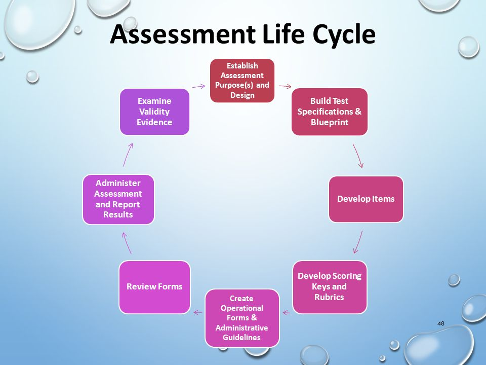 Assessment Life Cycle Examine Validity Evidence