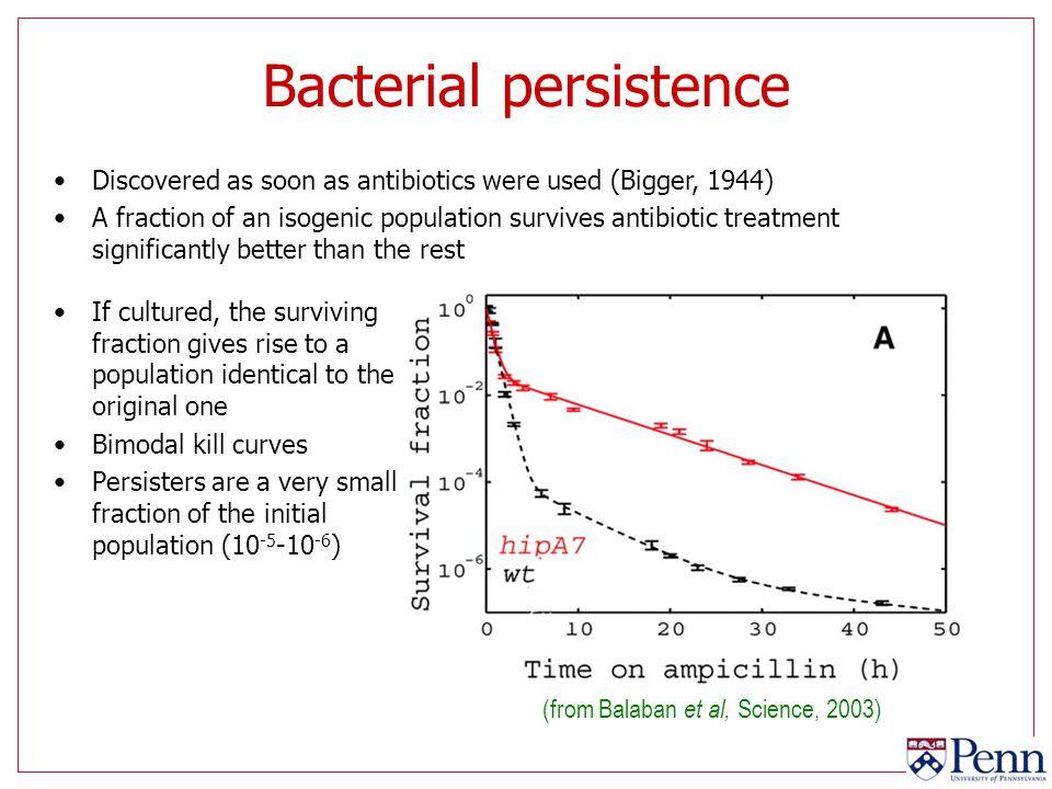 Bacterial persistence