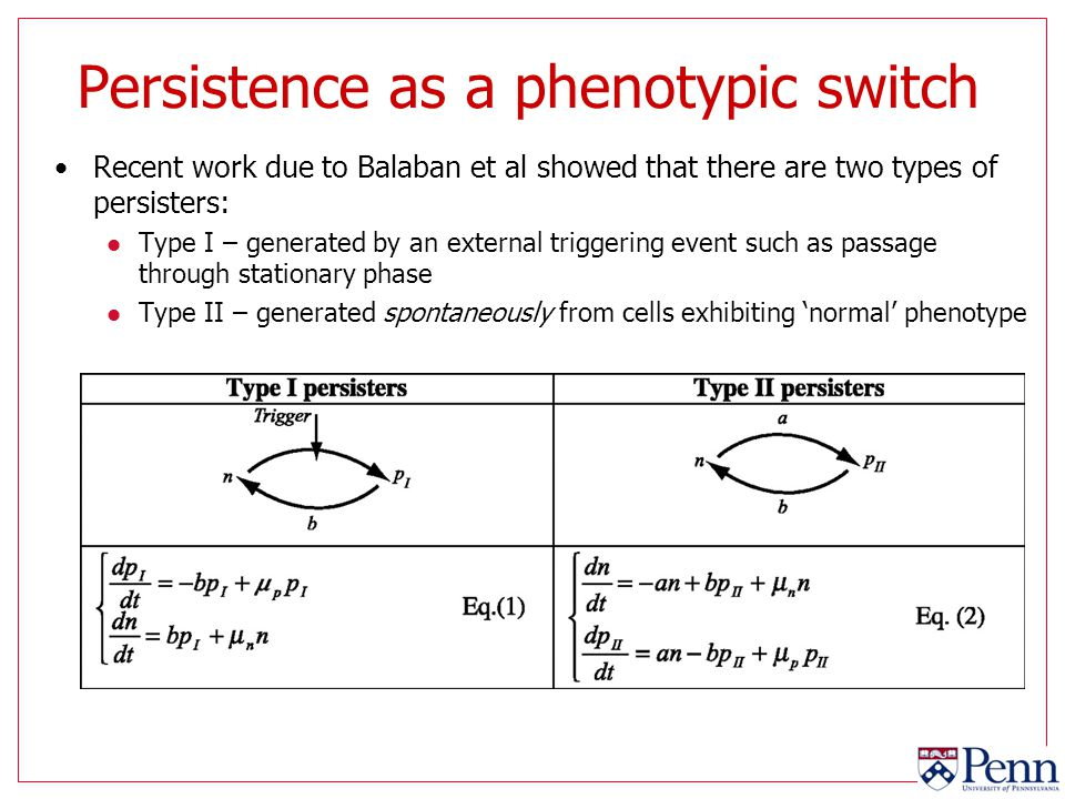 Persistence as a phenotypic switch