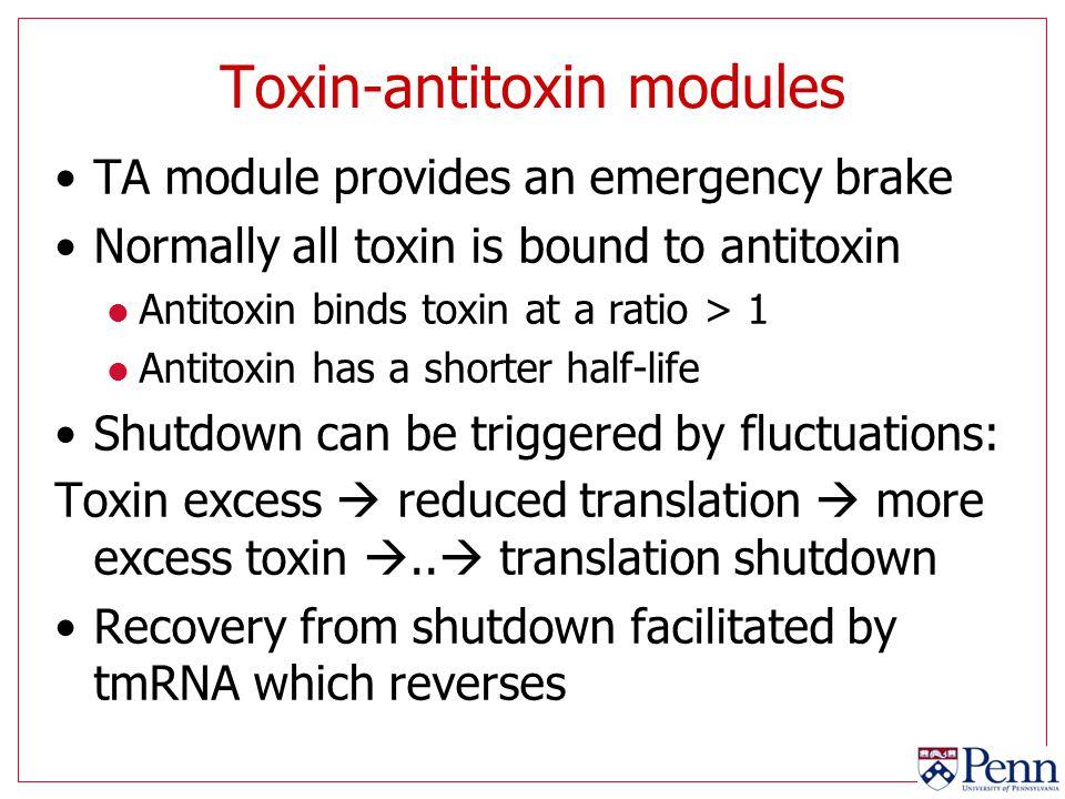 Toxin-antitoxin modules