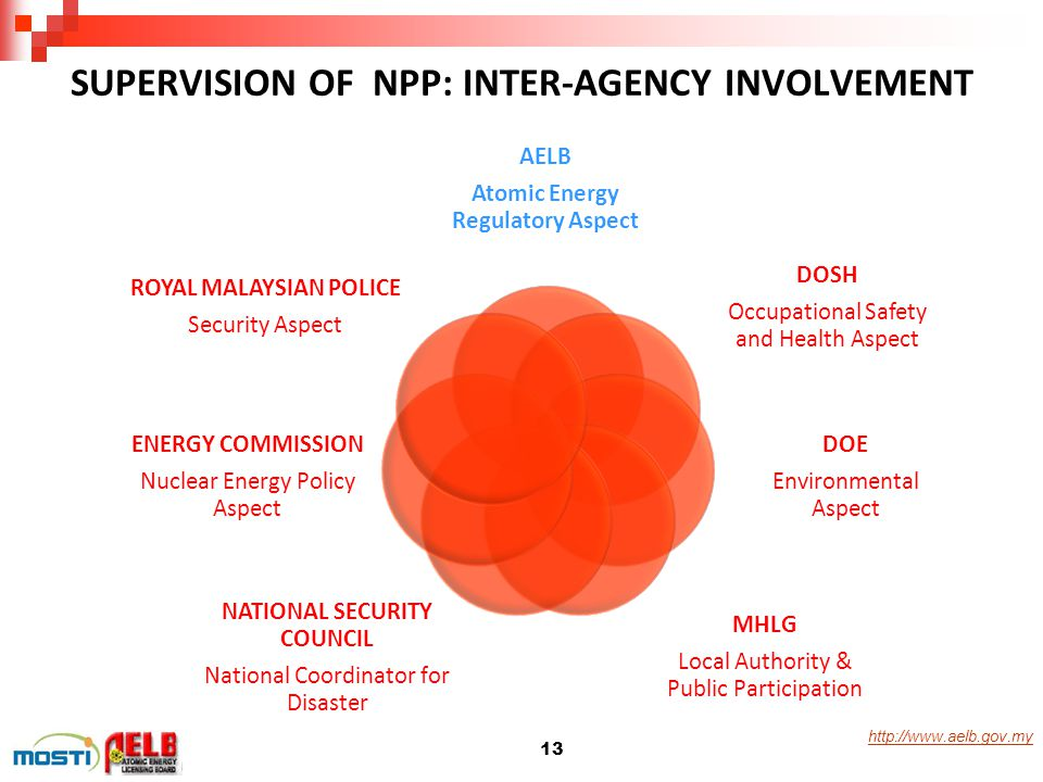 SUPERVISION OF NPP: INTER-AGENCY INVOLVEMENT