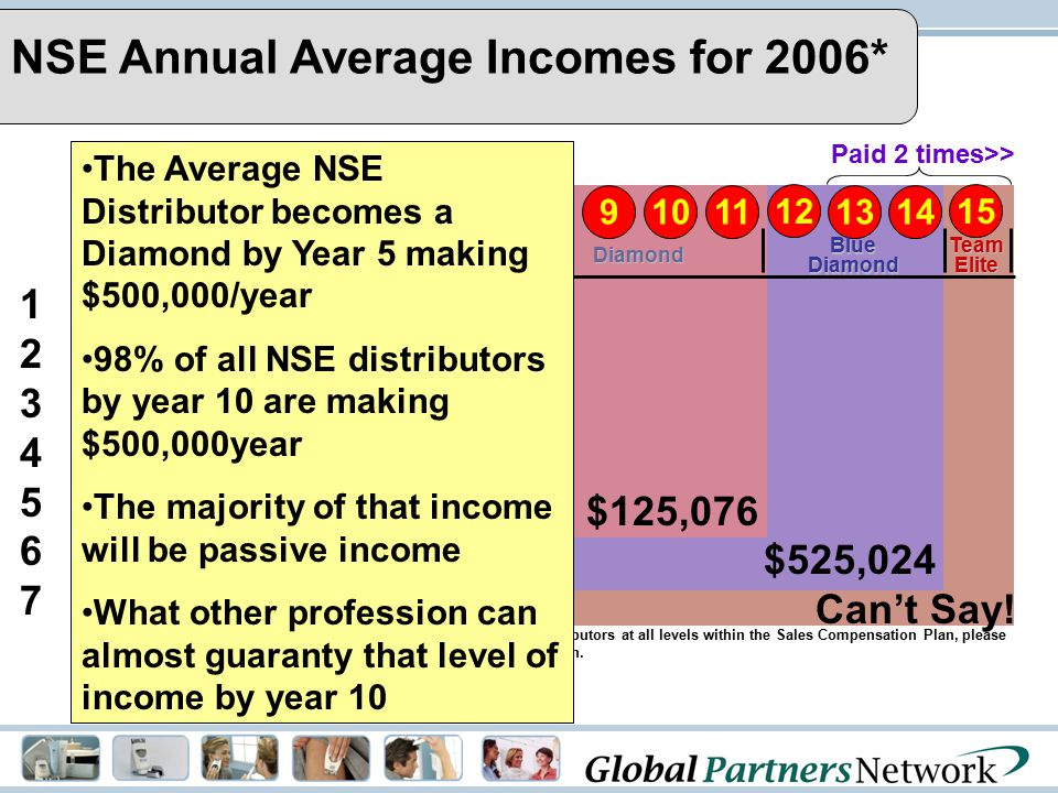 NSE Annual Average Incomes for 2006*