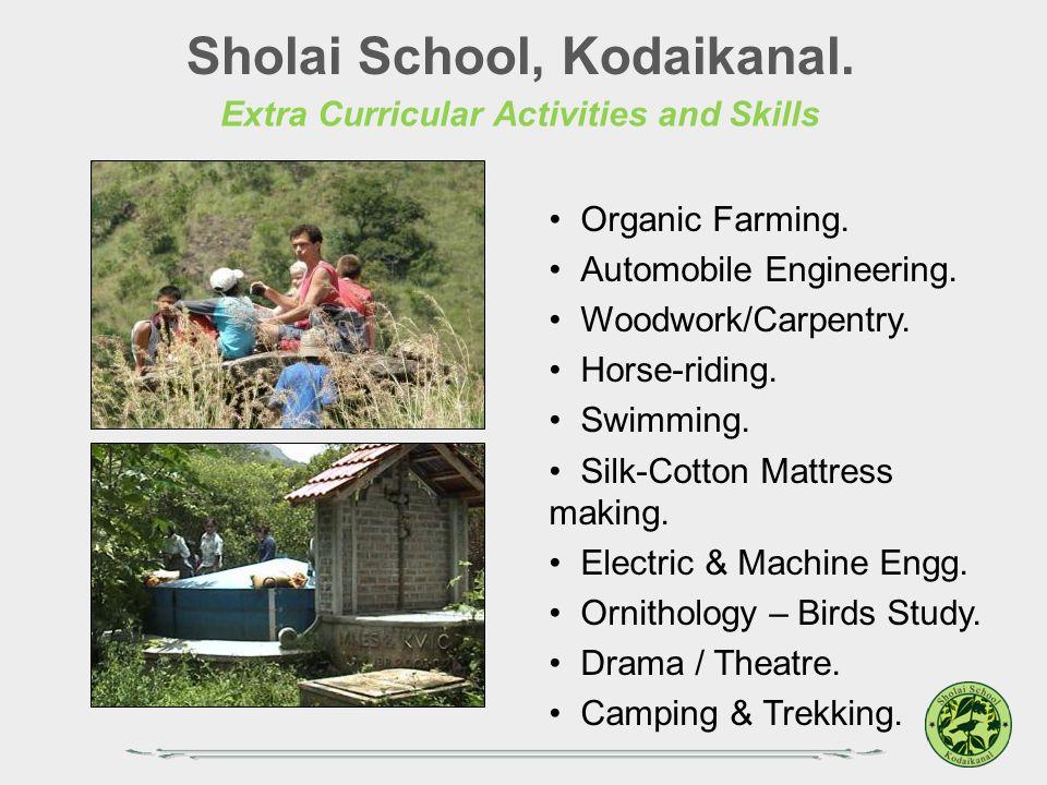 Sholai School, Kodaikanal. Extra Curricular Activities and Skills