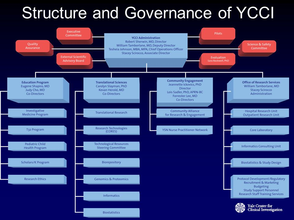 Structure and Governance of YCCI