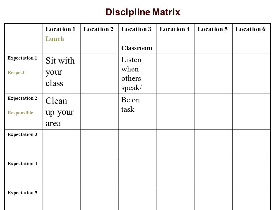 Discipline Matrix Sit with your class Clean up your area