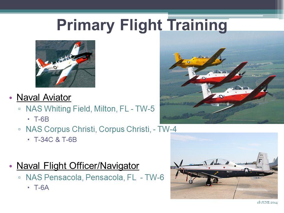 Primary Flight Training