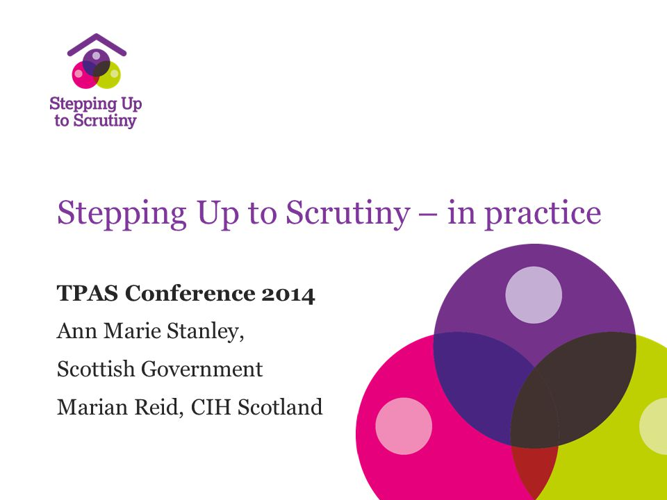Stepping Up to Scrutiny – in practice